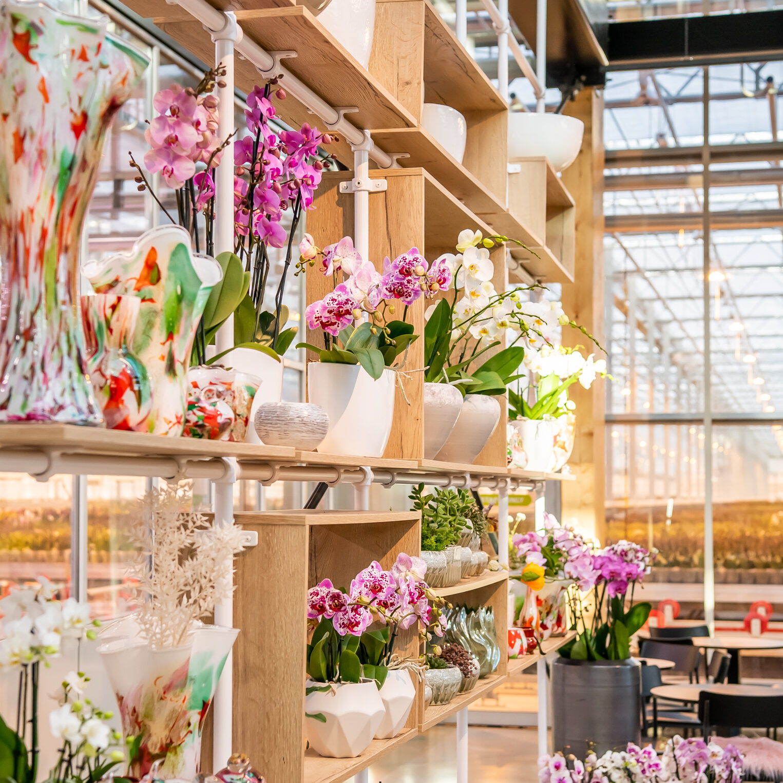 Orchid Store data and test center